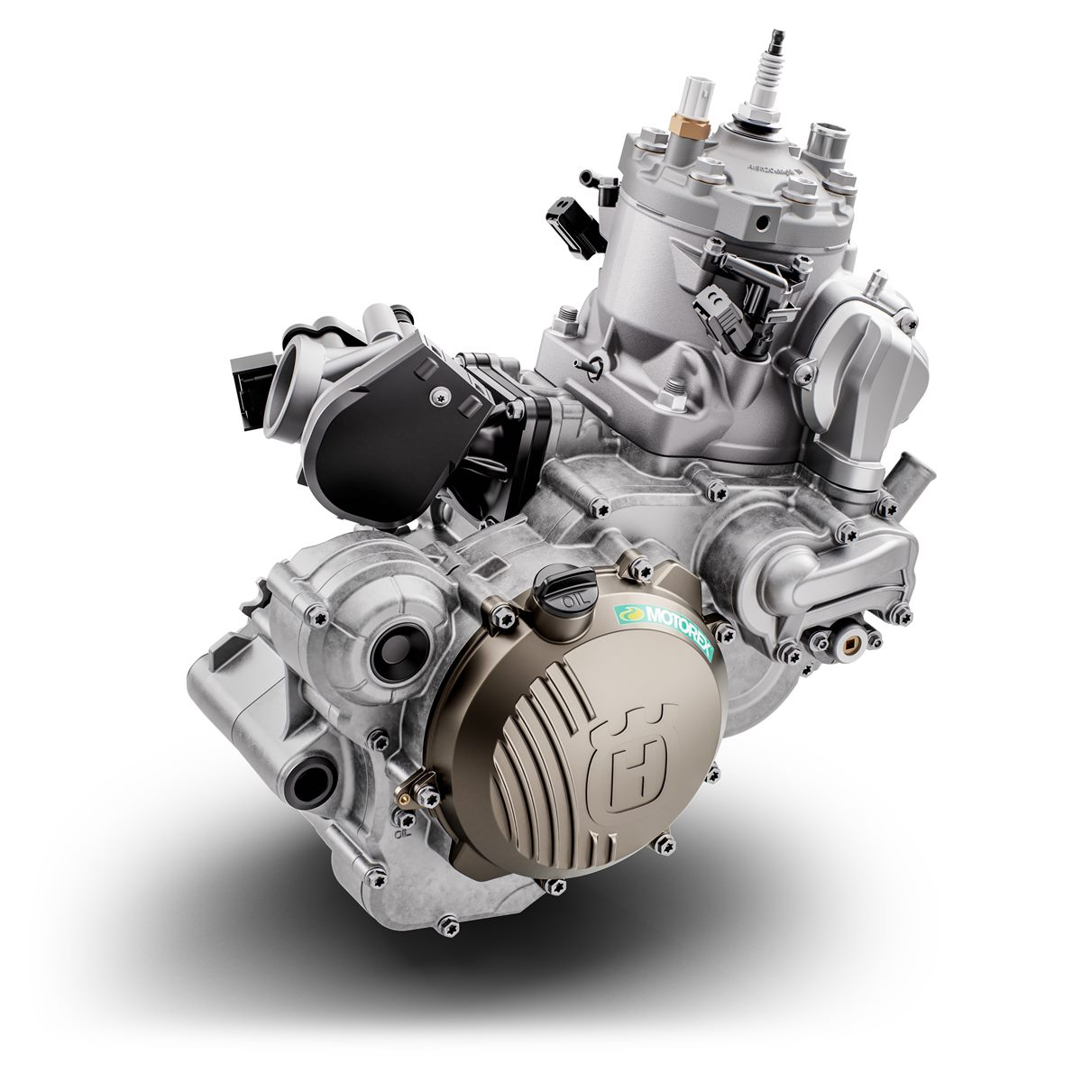 TE 300i 2020 Engine  (2)